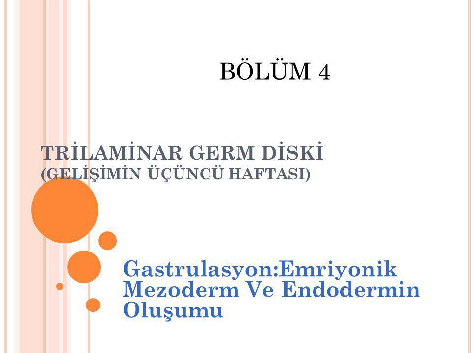 TRİLAMİNAR GERM DİSKİ (GELİŞİMİN ÜÇÜNCÜ HAFTASI) Gastrulasyon:Emriyonik Mezoderm Ve Endodermin Oluşumu BÖLÜM 4