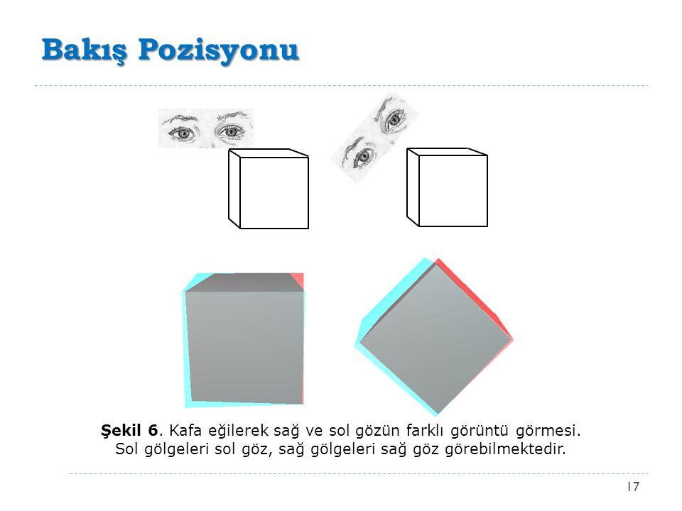 Bakış Pozisyonu 17 Şekil 6. Kafa eğilerek sağ ve sol gözün farklı görüntü görmesi. Sol gölgeleri sol göz, sağ gölgeleri sağ göz görebilmektedir.
