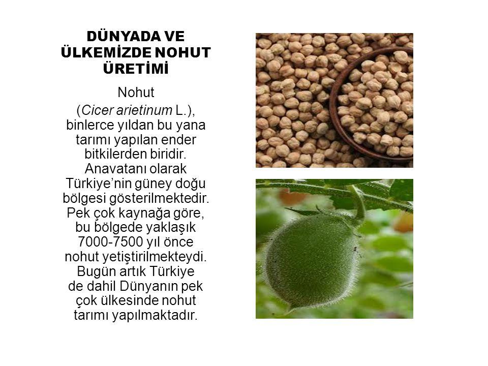 DÜNYADA VE ÜLKEMİZDE NOHUT ÜRETİMİ Nohut (Cicer arietinum L.), binlerce yıldan bu yana tarımı yapılan ender bitkilerden biridir. Anavatanı olarak Türk