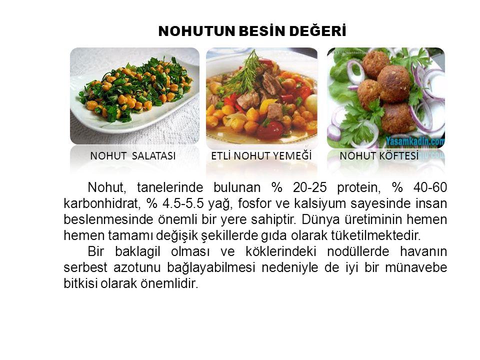 Nohut, ülkemizde tarımı yapılan yemeklik tane baklagiller içerisinde kuru fasulye ve mercimekten sonra en fazla yetiştirilen bir bitkidir.