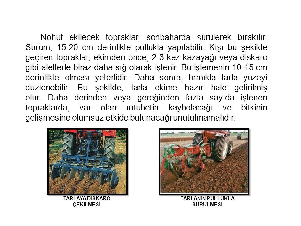 Nohut ekilecek topraklar, sonbaharda sürülerek bırakılır. Sürüm, 15-20 cm derinlikte pullukla yapılabilir. Kışı bu şekilde geçiren topraklar, ekimden
