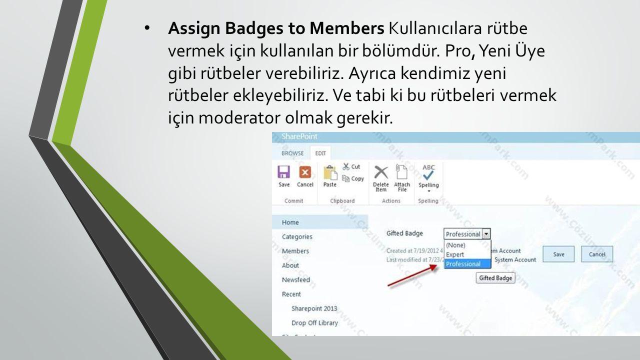 • Assign Badges to Members Kullanıcılara rütbe vermek için kullanılan bir bölümdür.