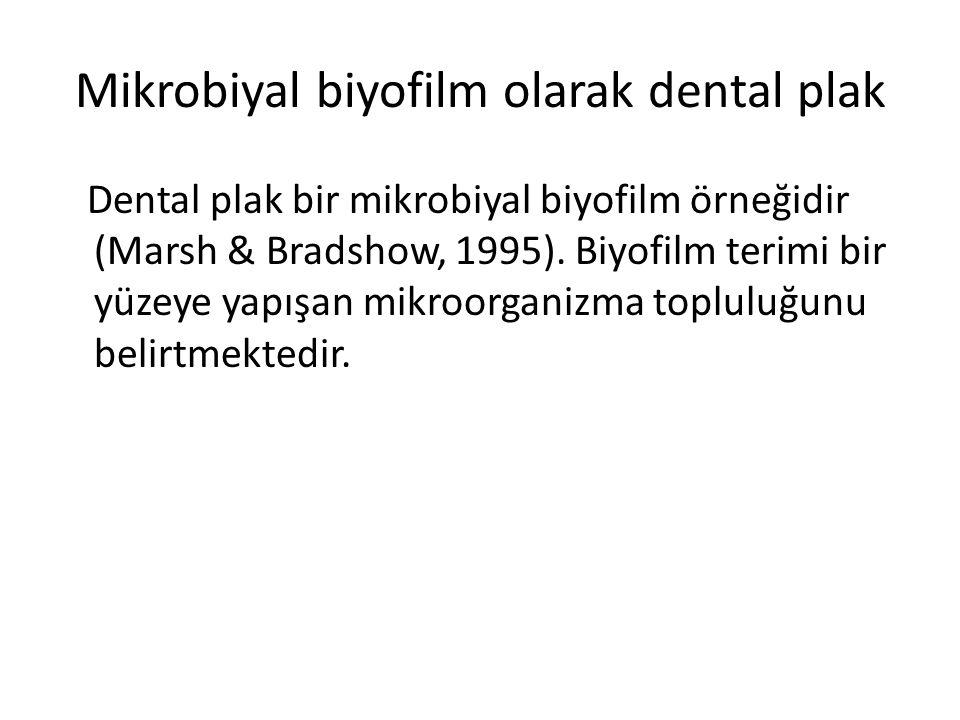 Mikrobiyal biyofilm olarak dental plak Dental plak bir mikrobiyal biyofilm örneğidir (Marsh & Bradshow, 1995). Biyofilm terimi bir yüzeye yapışan mikr