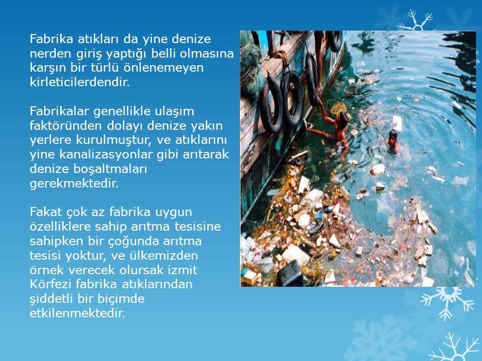 Fabrika atıkları da yine denize nerden giriş yaptığı belli olmasına karşın bir türlü önlenemeyen kirleticilerdendir. Fabrikalar genellikle ulaşım fakt