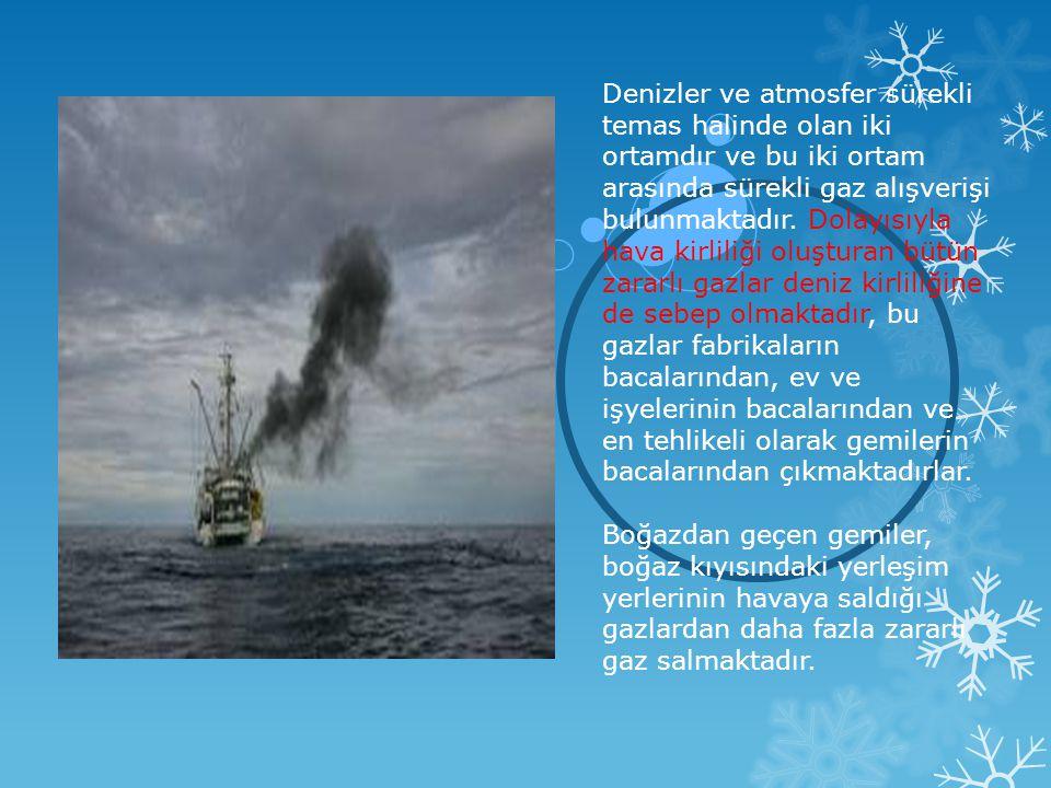 Denizler ve atmosfer sürekli temas halinde olan iki ortamdır ve bu iki ortam arasında sürekli gaz alışverişi bulunmaktadır. Dolayısıyla hava kirliliği