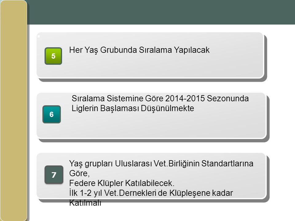 www.themegallery.com. www.izvet.com.tr 5 Her Yaş Grubunda Sıralama Yapılacak 6 Sıralama Sistemine Göre 2014-2015 Sezonunda Liglerin Başlaması Düşünülm