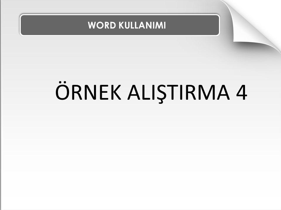 WORD KULLANIMI ÖRNEK ALIŞTIRMA 4