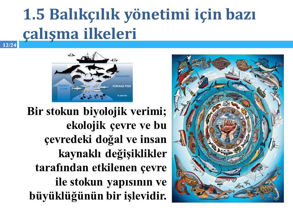 12/24 1.5 Balıkçılık yönetimi için bazı çalışma ilkeleri Bir stokun biyolojik verimi; ekolojik çevre ve bu çevredeki doğal ve insan kaynaklı değişikli