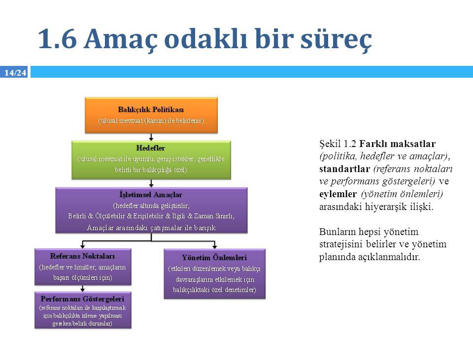 14/24 1.6 Amaç odaklı bir süreç Şekil 1.2 Farklı maksatlar (politika, hedefler ve amaçlar), standartlar (referans noktaları ve performans göstergeleri