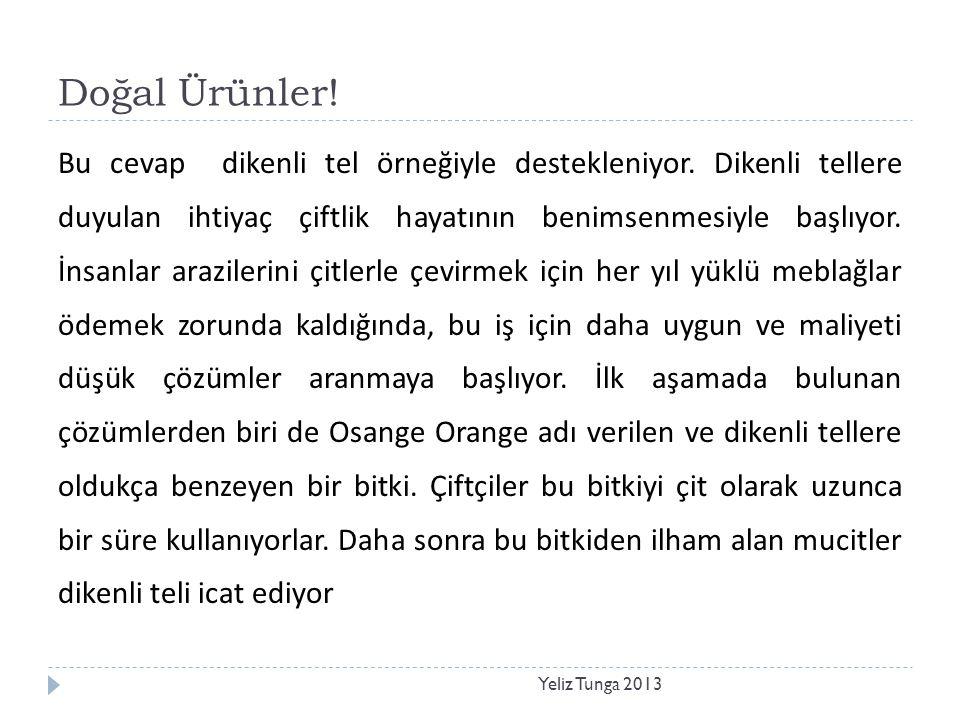 Doğal Ürünler! Yeliz Tunga 2013 Bu cevap dikenli tel örneğiyle destekleniyor. Dikenli tellere duyulan ihtiyaç çiftlik hayatının benimsenmesiyle başlıy