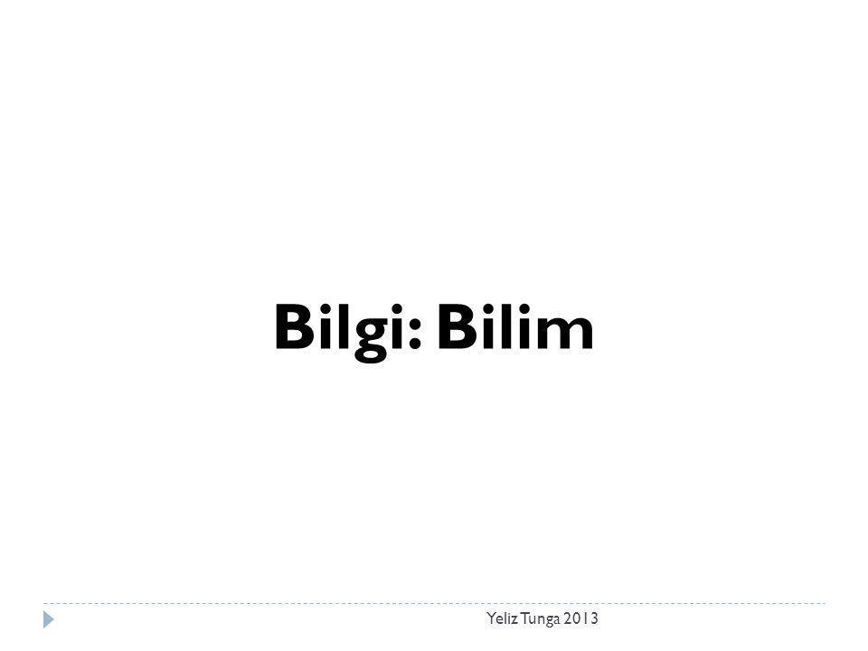 Yeliz Tunga 2013 Bilgi: Bilim