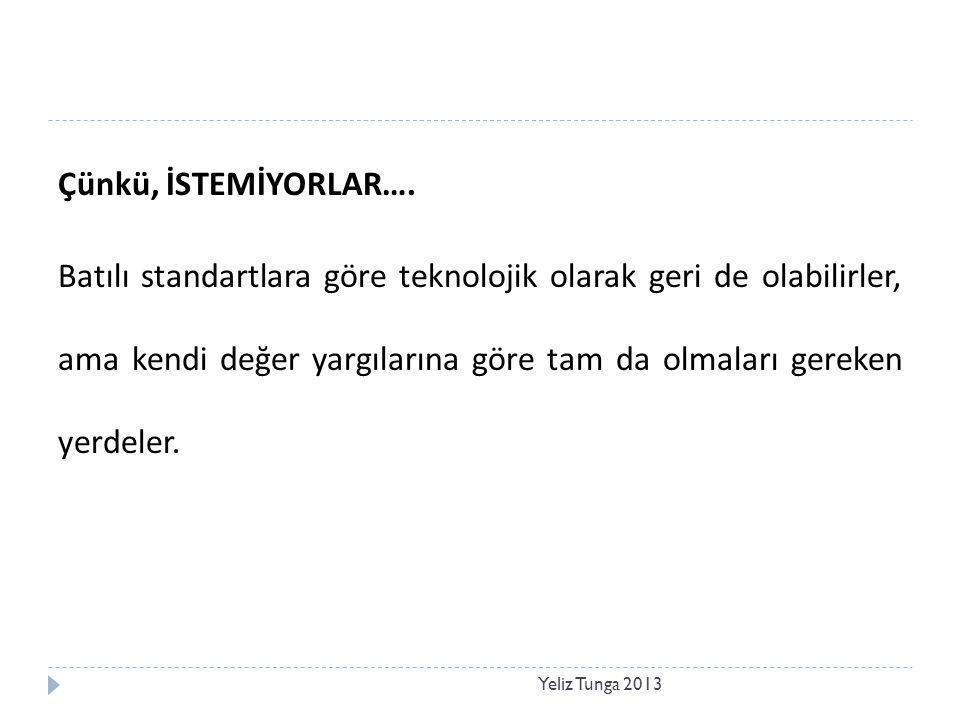 Pratik Bilgi Yeliz Tunga 2013  Teknolojinin tümü, sözcüklere, resimlere veya matematiksel denklemlere aktarılamaz.