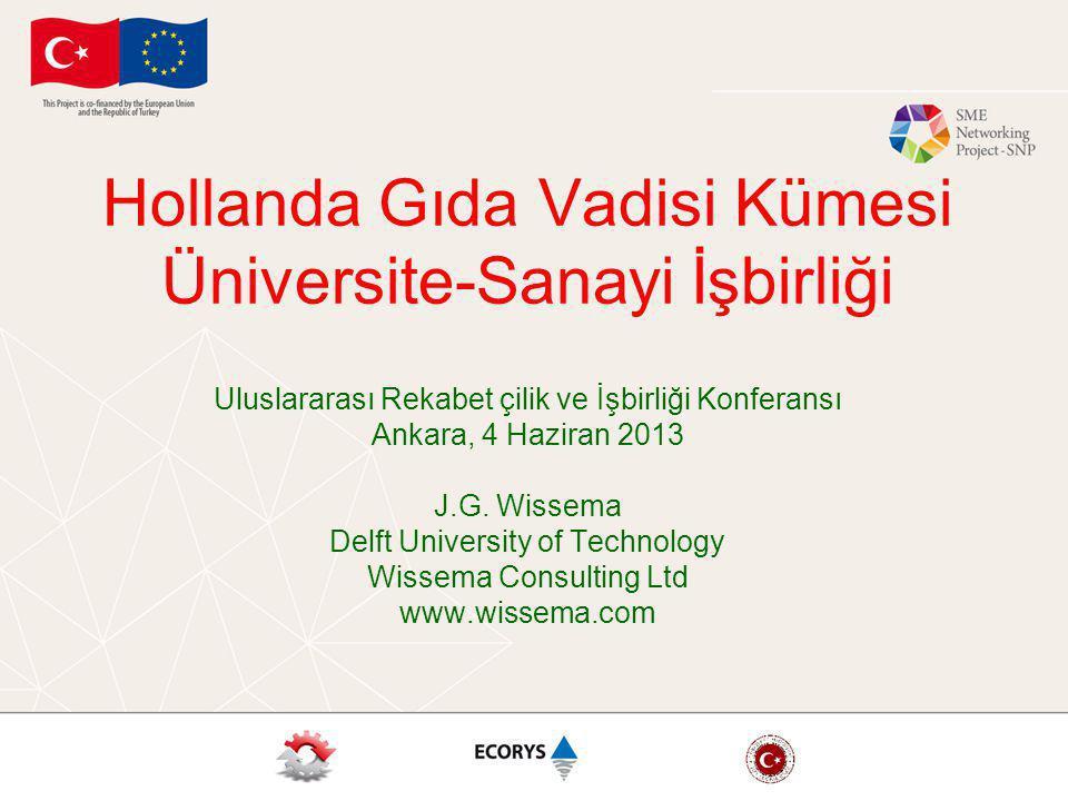 Hollanda Gıda Vadisi Kümesi Üniversite-Sanayi İşbirliği Uluslararası Rekabet çilik ve İşbirliği Konferansı Ankara, 4 Haziran 2013 J.G. Wissema Delft U