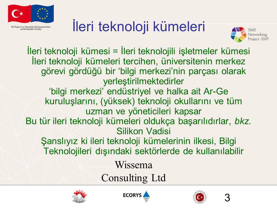 Wissema Consulting Ltd 3 İleri teknoloji kümeleri İleri teknoloji kümesi = İleri teknolojili işletmeler kümesi İleri teknoloji kümeleri tercihen, üniv