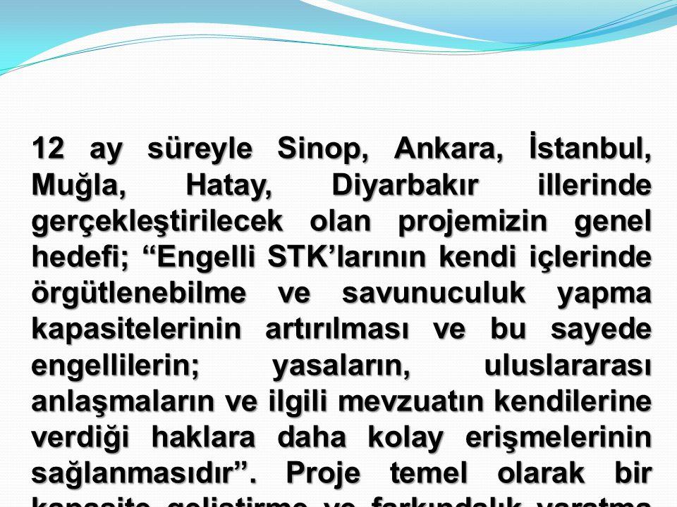 """12 ay süreyle Sinop, Ankara, İstanbul, Muğla, Hatay, Diyarbakır illerinde gerçekleştirilecek olan projemizin genel hedefi; """"Engelli STK'larının kendi"""