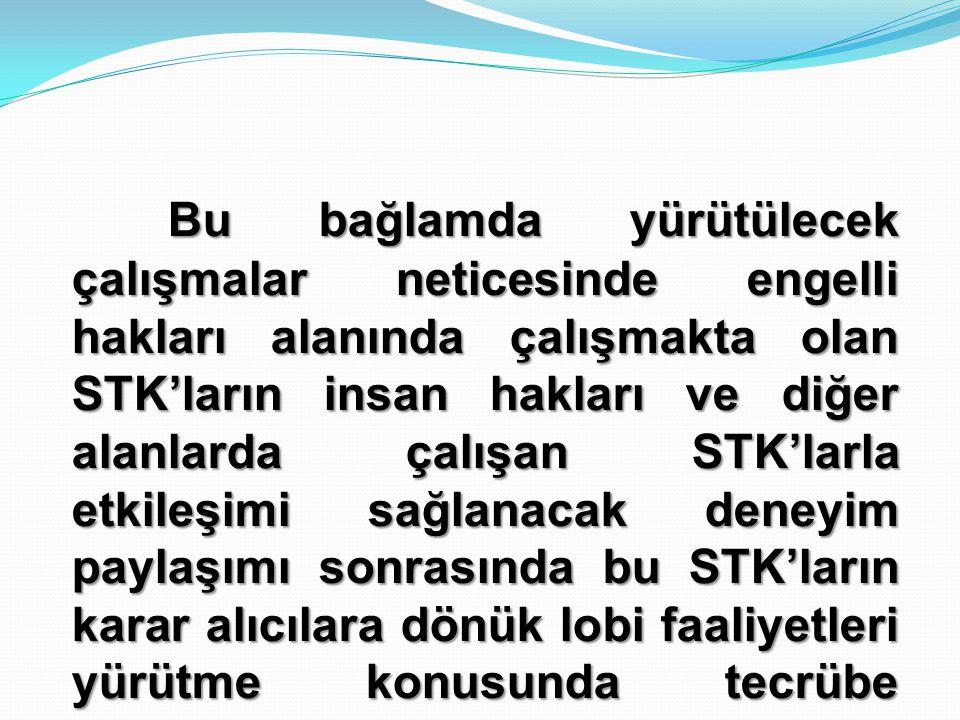 Bu bağlamda yürütülecek çalışmalar neticesinde engelli hakları alanında çalışmakta olan STK'ların insan hakları ve diğer alanlarda çalışan STK'larla etkileşimi sağlanacak deneyim paylaşımı sonrasında bu STK'ların karar alıcılara dönük lobi faaliyetleri yürütme konusunda tecrübe kazanmalarına katkı sunulacaktır.