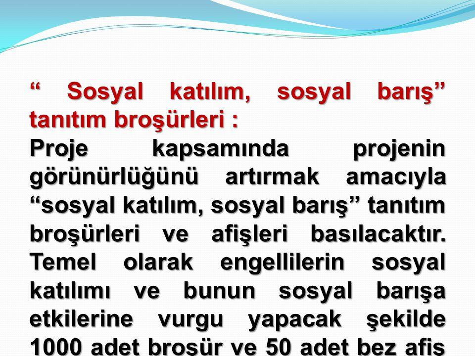 """"""" Sosyal katılım, sosyal barış"""" tanıtım broşürleri : Proje kapsamında projenin görünürlüğünü artırmak amacıyla """"sosyal katılım, sosyal barış"""" tanıtım"""