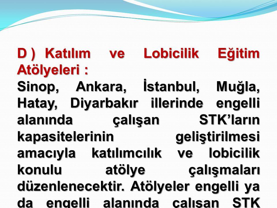 D )Katılım ve Lobicilik Eğitim Atölyeleri : Sinop, Ankara, İstanbul, Muğla, Hatay, Diyarbakır illerinde engelli alanında çalışan STK'ların kapasiteler