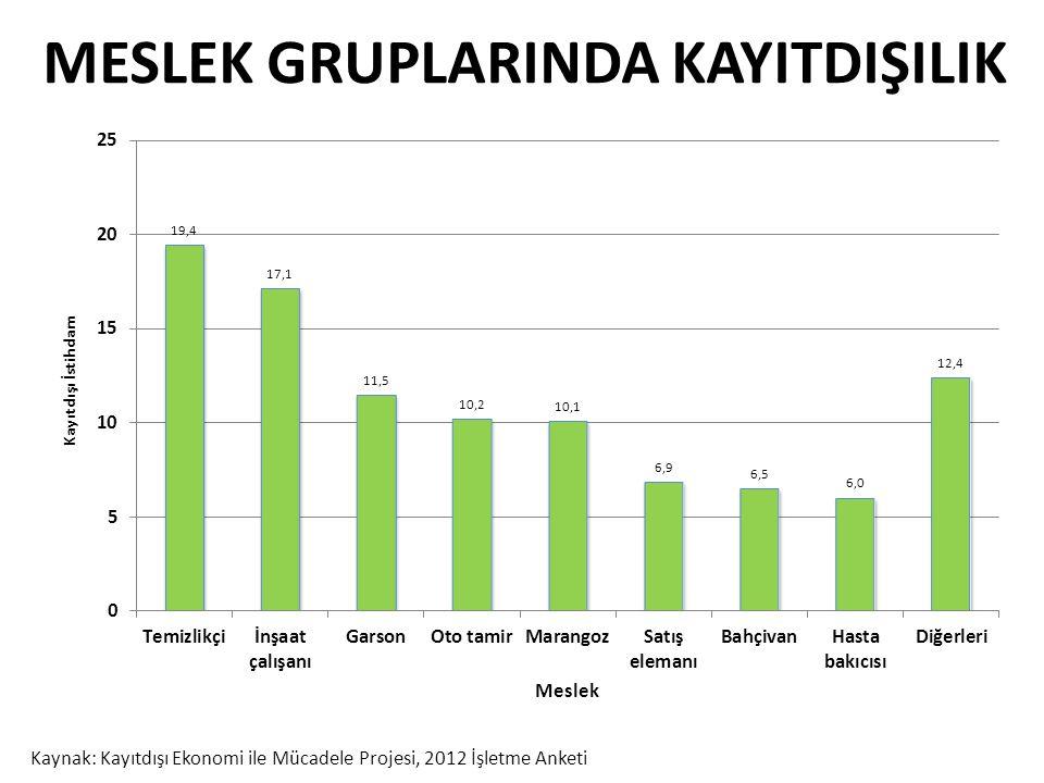 MESLEK GRUPLARINDA KAYITDIŞILIK Kaynak: Kayıtdışı Ekonomi ile Mücadele Projesi, 2012 İşletme Anketi