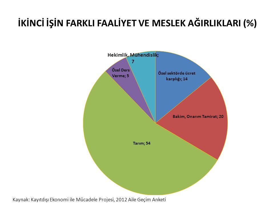 İKİNCİ İŞİN FARKLI FAALİYET VE MESLEK AĞIRLIKLARI (%) Kaynak: Kayıtdışı Ekonomi ile Mücadele Projesi, 2012 Aile Geçim Anketi