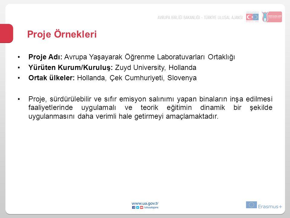 Proje Örnekleri •Proje Adı: Avrupa Yaşayarak Öğrenme Laboratuvarları Ortaklığı •Yürüten Kurum/Kuruluş: Zuyd University, Hollanda •Ortak ülkeler: Holla