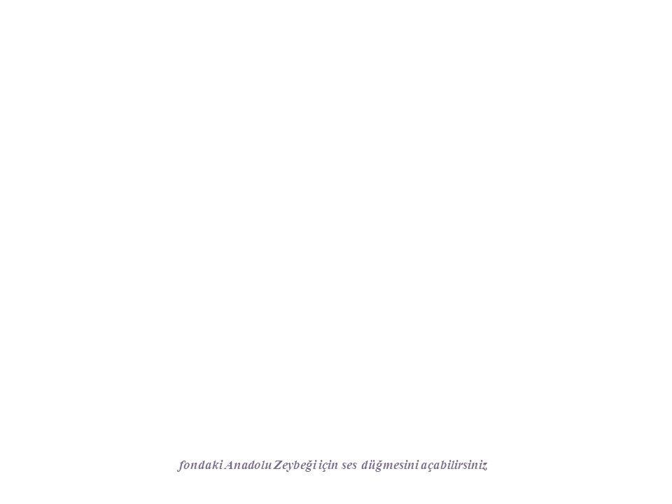 fondaki Anadolu Zeybeği için ses düğmesini açabilirsiniz
