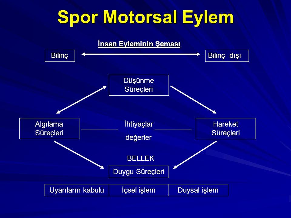 Spor Motorsal Eylem BELLEK Düşünme Süreçleri Algılama Süreçleri Hareket Süreçleri Duygu Süreçleri İhtiyaçlar değerler Uyarıların kabulüİçsel işlemDuys
