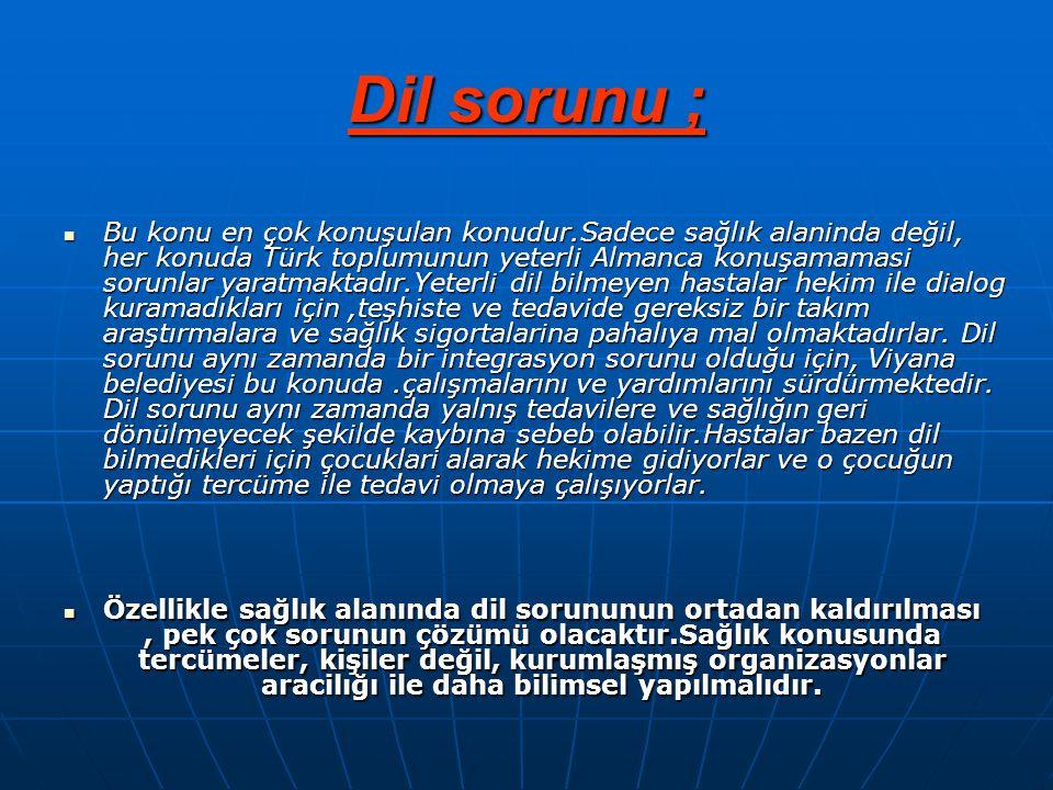 Dil sorunu ;  Bu konu en çok konuşulan konudur.Sadece sağlık alaninda değil, her konuda Türk toplumunun yeterli Almanca konuşamamasi sorunlar yaratma