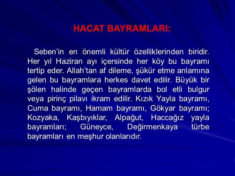 HACAT BAYRAMLARI: Seben'in en önemli kültür özelliklerinden biridir. Her yıl Haziran ayı içersinde her köy bu bayramı tertip eder. Allah'tan af dileme