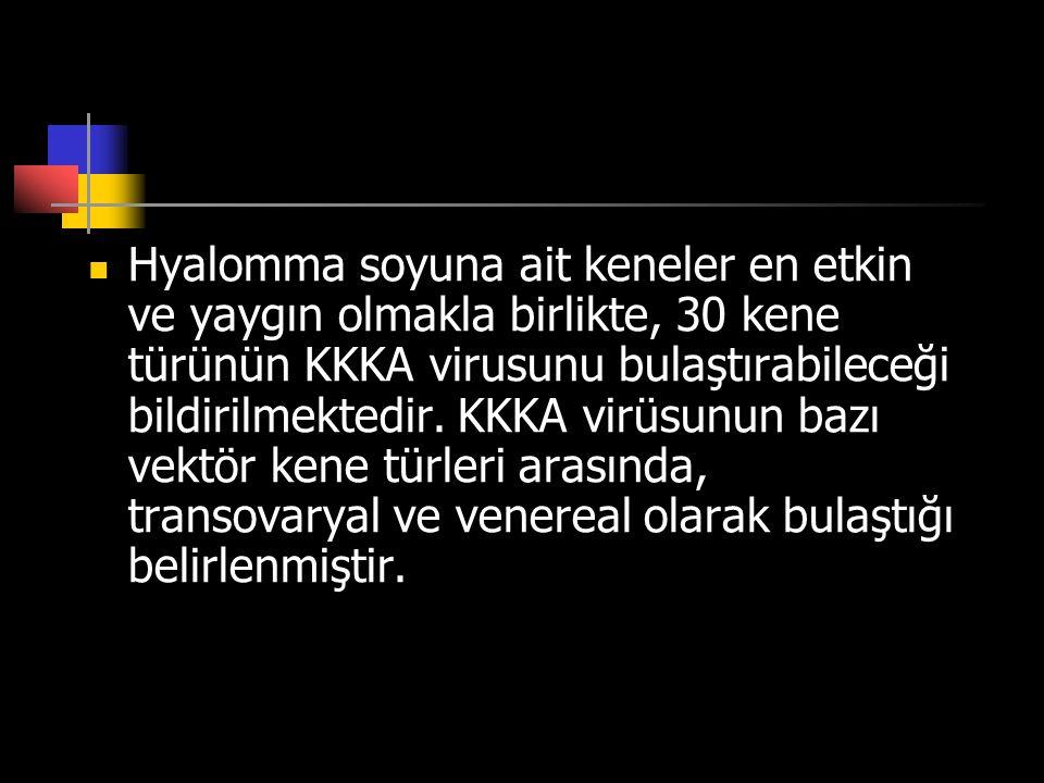  Hyalomma soyuna ait keneler en etkin ve yaygın olmakla birlikte, 30 kene türünün KKKA virusunu bulaştırabileceği bildirilmektedir. KKKA virüsunun ba