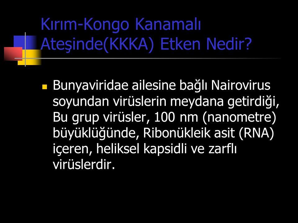 Kırım-Kongo Kanamalı Ateşinde(KKKA) Etken Nedir?  Bunyaviridae ailesine bağlı Nairovirus soyundan virüslerin meydana getirdiği, Bu grup virüsler, 100