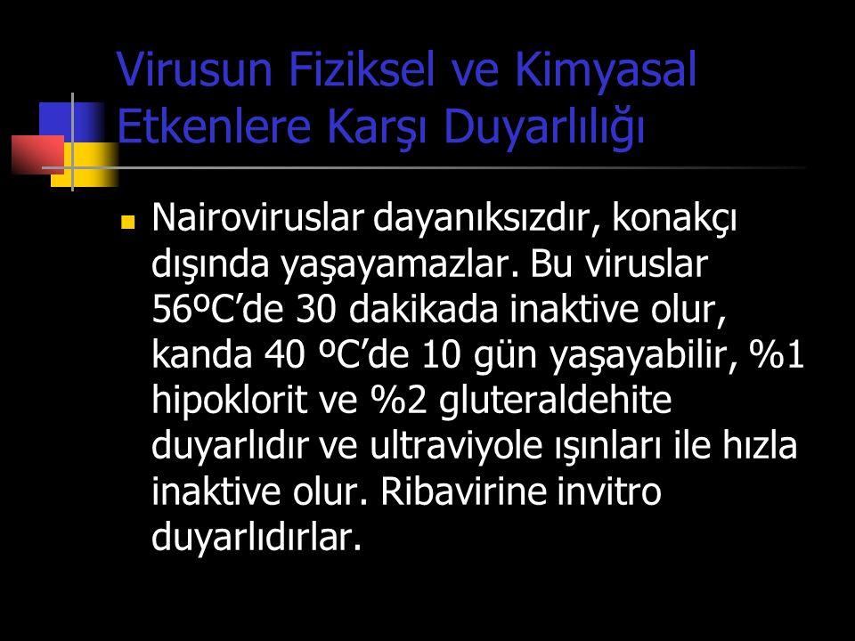 Virusun Fiziksel ve Kimyasal Etkenlere Karşı Duyarlılığı  Nairoviruslar dayanıksızdır, konakçı dışında yaşayamazlar. Bu viruslar 56ºC'de 30 dakikada