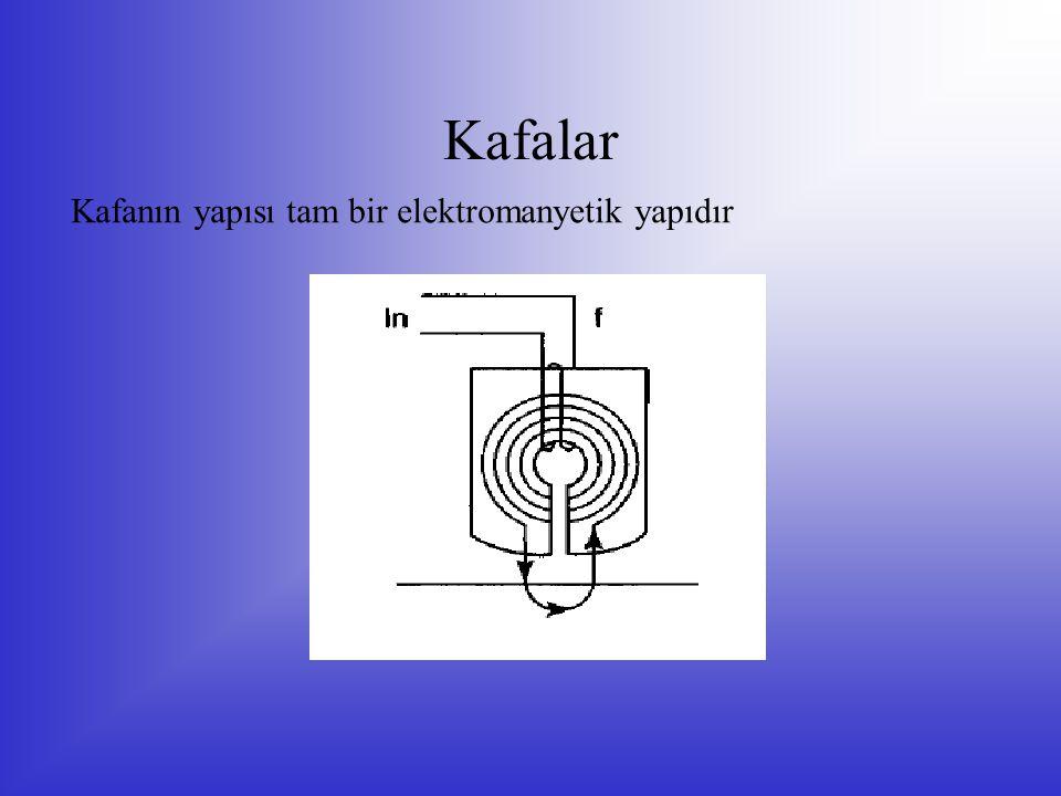 Kafalar Kafanın yapısı tam bir elektromanyetik yapıdır