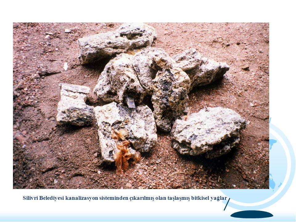 Silivri Belediyesi kanalizasyon sisteminden çıkarılmış olan taşlaşmış bitkisel yağlar
