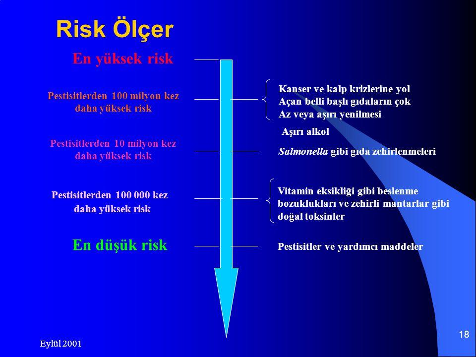 Eylül 2001 17 Risk ve tehlike !!.