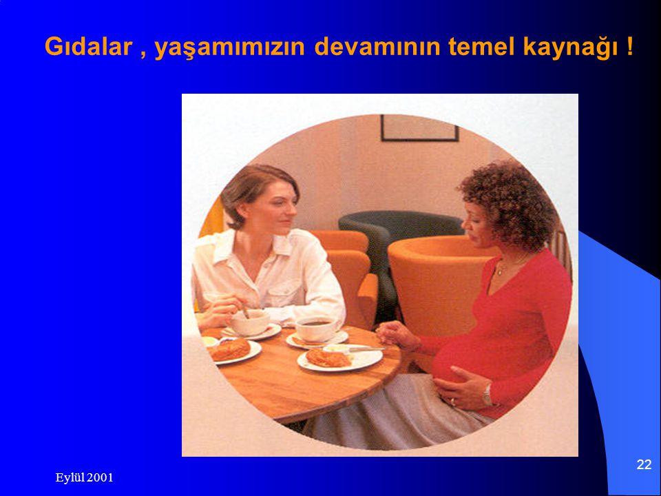 Eylül 2001 22 Gıdalar, yaşamımızın devamının temel kaynağı !