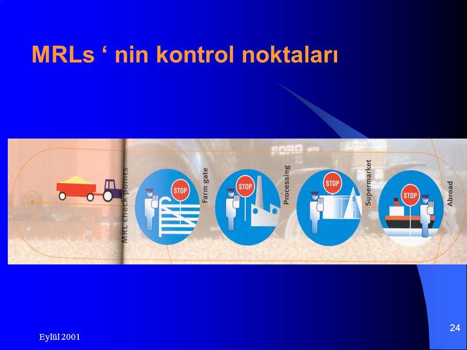 Eylül 2001 24 MRLs ' nin kontrol noktaları