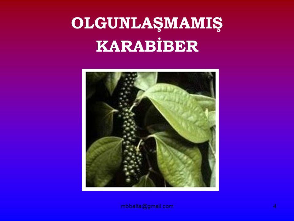 mbbalta@gmail.com25 - T A Ş -