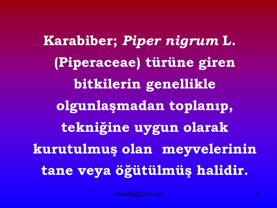 mbbalta@gmail.com6 Karabiber; Piper nigrum L.