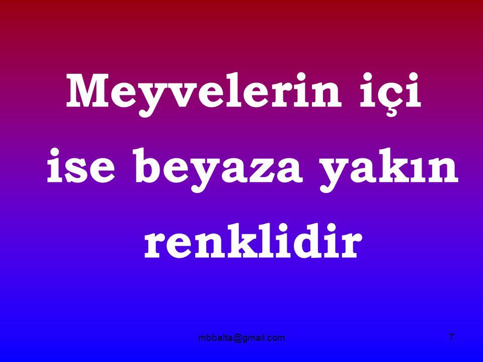 mbbalta@gmail.com28 - T A Ş -