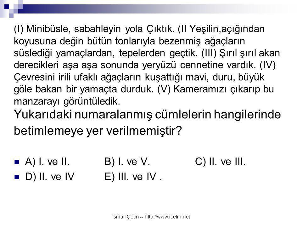 İsmail Çetin -- http://www.icetin.net (I) Minibüsle, sabahleyin yola Çıktık.