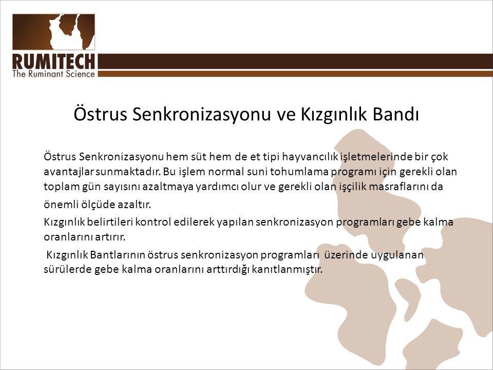 Östrus Senkronizasyonu ve Kızgınlık Bandı Östrus Senkronizasyonu hem süt hem de et tipi hayvancılık işletmelerinde bir çok avantajlar sunmaktadır.