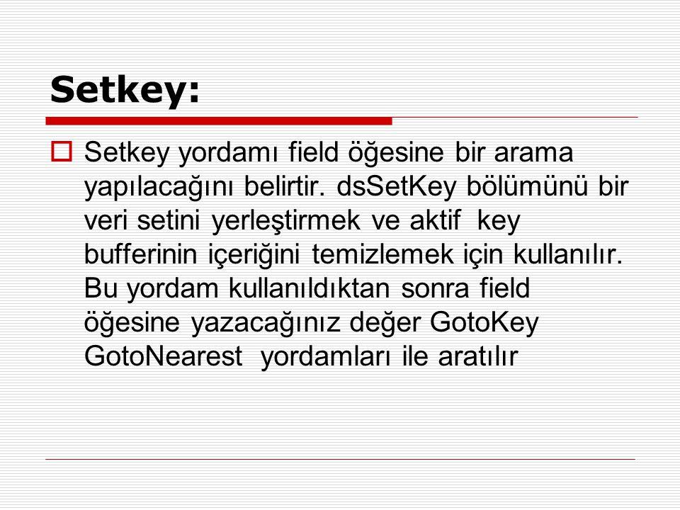Setkey:  Setkey yordamı field öğesine bir arama yapılacağını belirtir. dsSetKey bölümünü bir veri setini yerleştirmek ve aktif key bufferinin içeriği