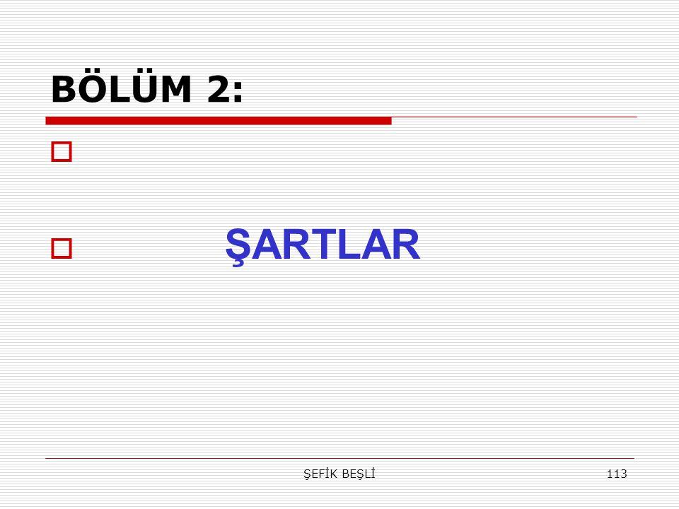 ŞEFİK BEŞLİ113 BÖLÜM 2:   ŞARTLAR