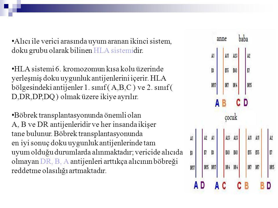 • Alıcı ile verici arasında uyum aranan ikinci sistem, doku grubu olarak bilinen HLA sistemidir. • HLA sistemi 6. kromozomun kısa kolu üzerinde yerleş