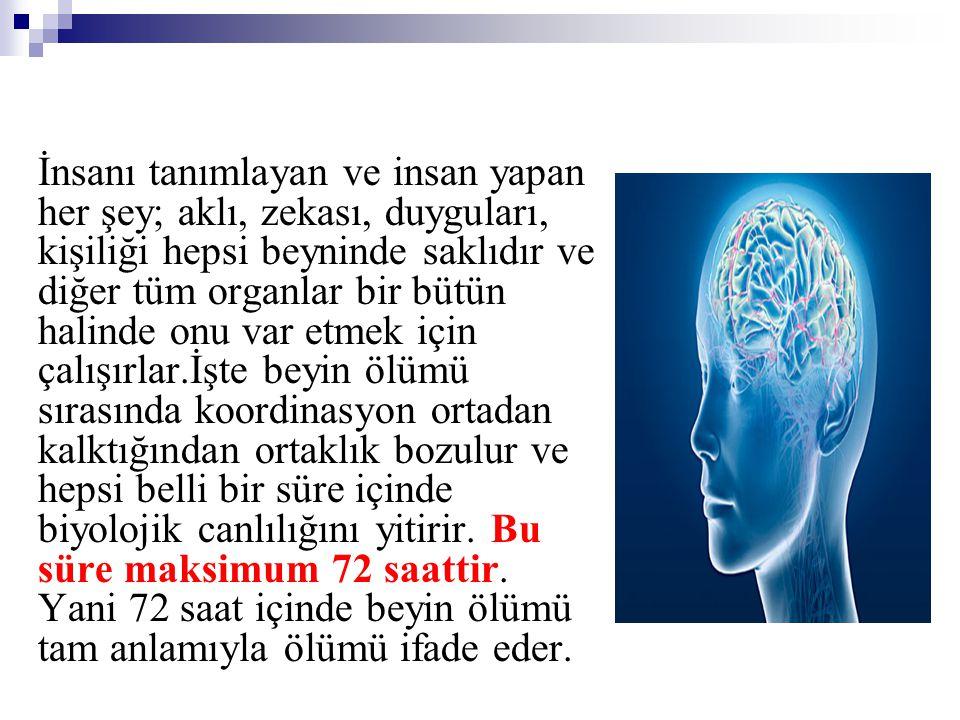 İnsanı tanımlayan ve insan yapan her şey; aklı, zekası, duyguları, kişiliği hepsi beyninde saklıdır ve diğer tüm organlar bir bütün halinde onu var et