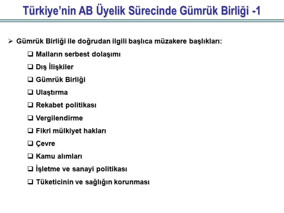 Türkiye'nin AB Üyelik Sürecinde Gümrük Birliği -1  Gümrük Birliği ile doğrudan ilgili başlıca müzakere başlıkları:  Malların serbest dolaşımı  Dış İlişkiler  Gümrük Birliği  Ulaştırma  Rekabet politikası  Vergilendirme  Fikri mülkiyet hakları  Çevre  Kamu alımları  İşletme ve sanayi politikası  Tüketicinin ve sağlığın korunması