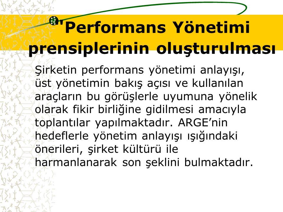 Performans Yönetimi prensiplerinin oluşturulması Şirketin performans yönetimi anlayışı, üst yönetimin bakış açısı ve kullanılan araçların bu görüşlerle uyumuna yönelik olarak fikir birliğine gidilmesi amacıyla toplantılar yapılmaktadır.