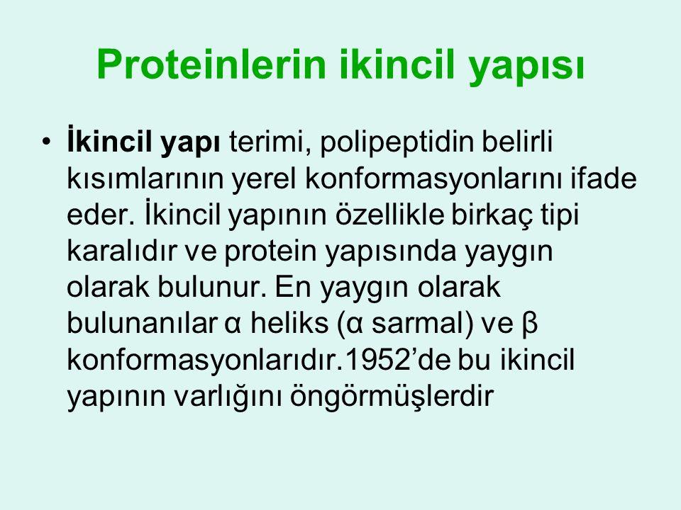 Proteinlerin ikincil yapısı •İkincil yapı terimi, polipeptidin belirli kısımlarının yerel konformasyonlarını ifade eder. İkincil yapının özellikle bir