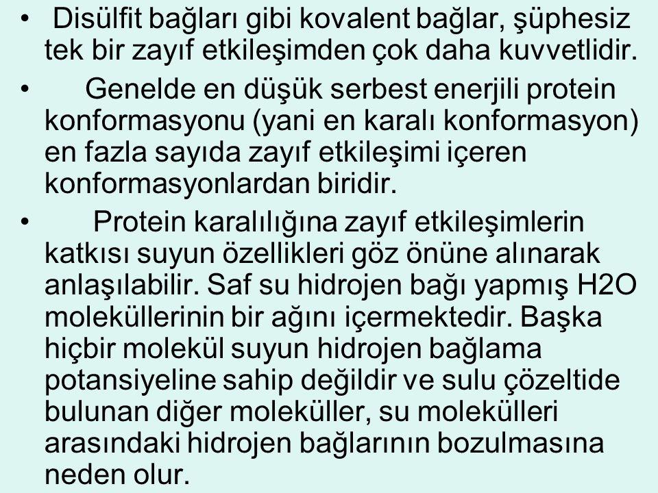 • Disülfit bağları gibi kovalent bağlar, şüphesiz tek bir zayıf etkileşimden çok daha kuvvetlidir. • Genelde en düşük serbest enerjili protein konform